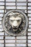 head lionskulpturtappning Arkivbilder