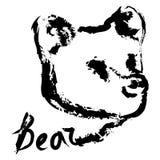 Head logo för björn Arkivbild