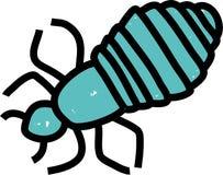 Head louse stock illustration