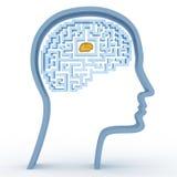 head mänsklig maze för hjärna Arkivfoton