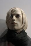 Head of a Mannequin. Mannequin of a blond man with black scarf (not a human Royalty Free Stock Image