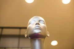 Head of mannequin Royalty Free Stock Photo