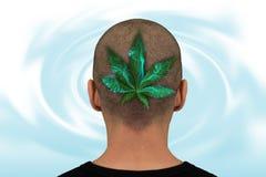 Head with marijuana leaf Royalty Free Stock Image