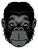 Head maskot för apa Arkivbilder