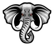 Head maskot för elefant Arkivbilder