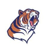 Head maskot för tiger royaltyfri illustrationer