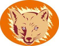 head maskotred för räv Royaltyfri Bild