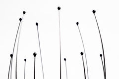 Head massager ends. Therapeutic head scalp massager ends with selective focus Stock Images