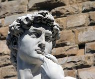 Head of Michelangelo's David Stock Image
