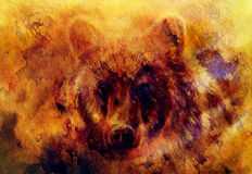 Head of mighty brown bear, oil painting on canvas and graphic collage. Eye contact. Stock Photo