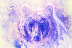 Head of mighty brown bear, oil painting on canvas and graphic collage. Eye contact. Royalty Free Stock Photo