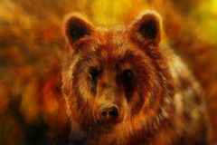 Head of mighty brown bear, oil painting on canvas and graphic collage. Eye contact. Stock Photography