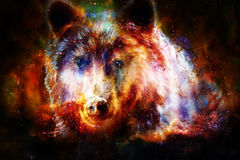 Head of mighty brown bear in space, oil painting on canvas and graphic collage. Eye contact. Stock Photography