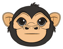 Head of monkey without any emotion Royalty Free Stock Images