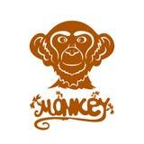 Head of monkey Stock Photography