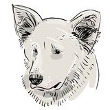Head, muzzle the dog. Shepherd. Sketch drawing. Black contour on a white background.  Royalty Free Stock Photo