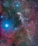 Head nebulosa för häxa fotografering för bildbyråer