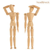 Head and neck pose Stock Images