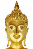 Head Of Buddha Royalty Free Stock Photo