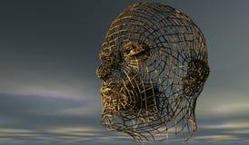 Head, Organism, Sky, Skeleton royalty free stock image