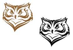 head owl Arkivbild