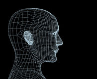 Head of the person from a 3d grid Royalty Free Stock Photography