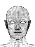Head of the person from a 3d grid vector illustration