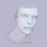 Head of the Person from a 3d Grid. Human Head Wire Model. Human Polygon Head. Face Scanning. View of Human Head. 3D Geometric Face Royalty Free Stock Photography