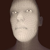 Head of the Person from a 3d Grid. Human Head Wire Model. Human Polygon Head. Face Scanning. View of Human Head. 3D Geometric Face Stock Photo