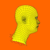 Head of the Person from a 3d Grid. Human Head Wire Model. Human Polygon Head. Face Scanning. View of Human Head. 3D Geometric Face Stock Photos