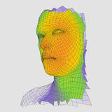Head of the Person from a 3d Grid. Human Head Wire Model. Human Polygon Head. Face Scanning. View of Human Head. 3D Geometric Face Royalty Free Stock Photos