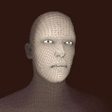 Head of the Person from a 3d Grid. Human Head Wire Model. Human Polygon Head. Face Scanning. View of Human Head. 3D Geometric Face. Design. 3d Polygonal Royalty Free Stock Photo