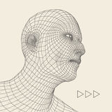 Head of the Person from a 3d Grid. Human Head Wire Model. Human Polygon Head. Face Scanning. View of Human Head. 3D Geometric Face Stock Photography