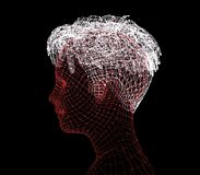 Head of the Person from a 3d Grid. Royalty Free Stock Photography