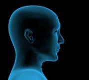 head personstråle genomskinligt x Arkivbild