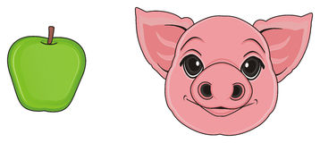 Head of pig with apple Stock Photography