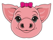 Head of pig with a bow Royalty Free Stock Images