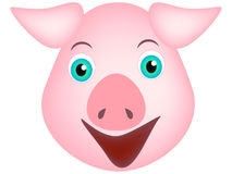 The head of a pig. Royalty Free Stock Photo