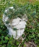 Head planter för flicka med suckulenter som växer i hennes head sammanträde i en säng av murgrönan Arkivbild