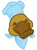 Head platypus or duckbill Stock Images