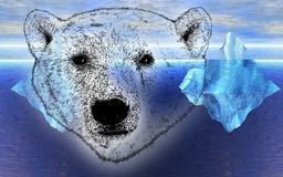 Head of Polar Bear with Icebergs in Background Stock Photos