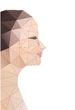 Head of polygons. abstract form of human Royalty Free Stock Photo