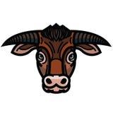Head of powerful horned bull Royalty Free Stock Photos
