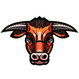 Head of powerful horned bull Royalty Free Stock Photo