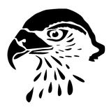 Head predator - buzzard - drawing Stock Photo