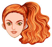 A head of a pretty woman Stock Images