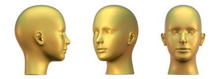 head projektioner tre för guld Royaltyfri Foto