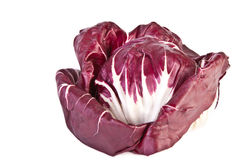 Head of radicchio salad Stock Photos