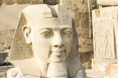 Head of Ramses II at the entrance of Luxor Temple, Egypt Stock Photos