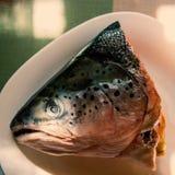 Head of raw salmon fish Royalty Free Stock Photos